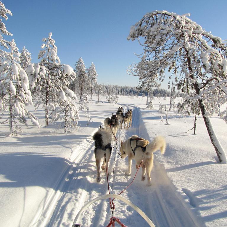 Presentatie Fins Lapland en IJsland